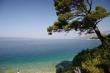 Borovice pri pláži v Brele - pokojné more na pobreží za ostrovom Brač, na pláži Borovice vytvárajúce dostatok tieňa,