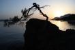 Západ slnka na Makarskej - Krásne západy slnka nad morom je možné pozorovať z celej Makarskej riviéry